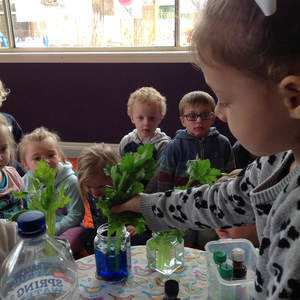 Ballarat Little Learners Early Education Centre