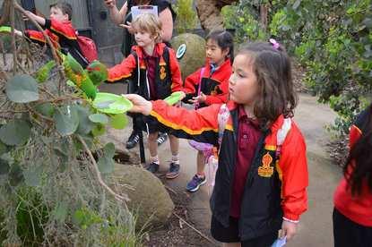 Yarra Valley Grammar School Early Learning Centre