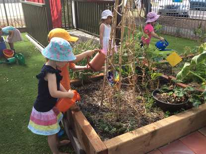 Narrabeen Community Kindergarten