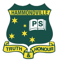 YMCA Hammondville OSHC
