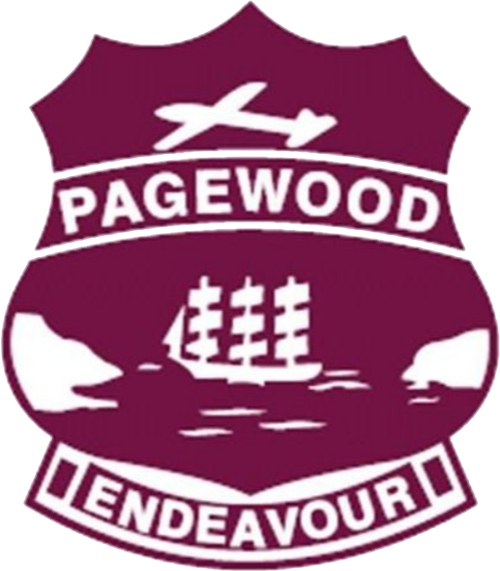 Star Club Pagewood Public School
