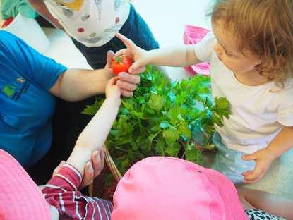 The Gap Cubbyhouse Montessori