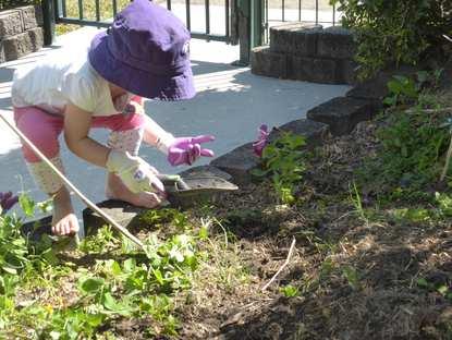 Springwood Community Kindergarten Association Inc