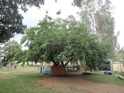 Strathpine Community Kindergarten and Preschool Association Inc.