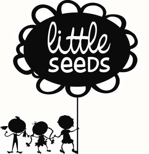 Little Seeds Early Learning Centre