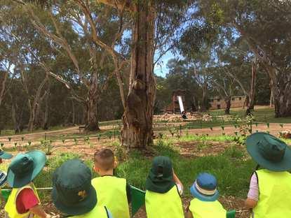 One Tree Hill Preschool
