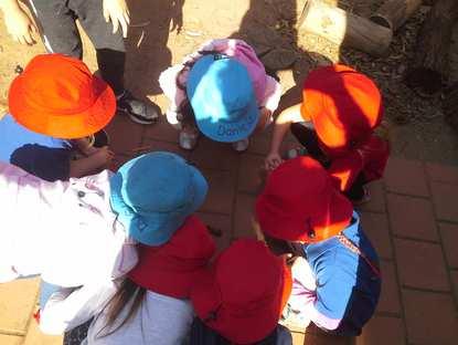Paralowie Kindergarten